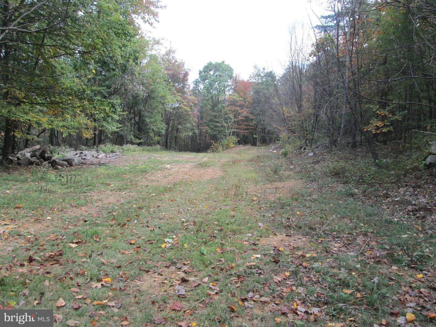 Land for Sale at 2 BARK Road Crystal Spring, Pennsylvania 15536 United States