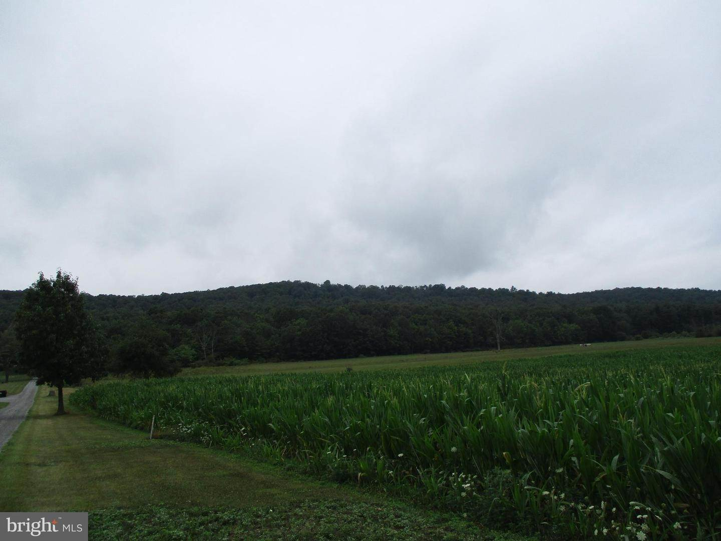 Land for Sale at 5189 HALF MOON VALLEY Road Warriors Mark, Pennsylvania 16877 United States