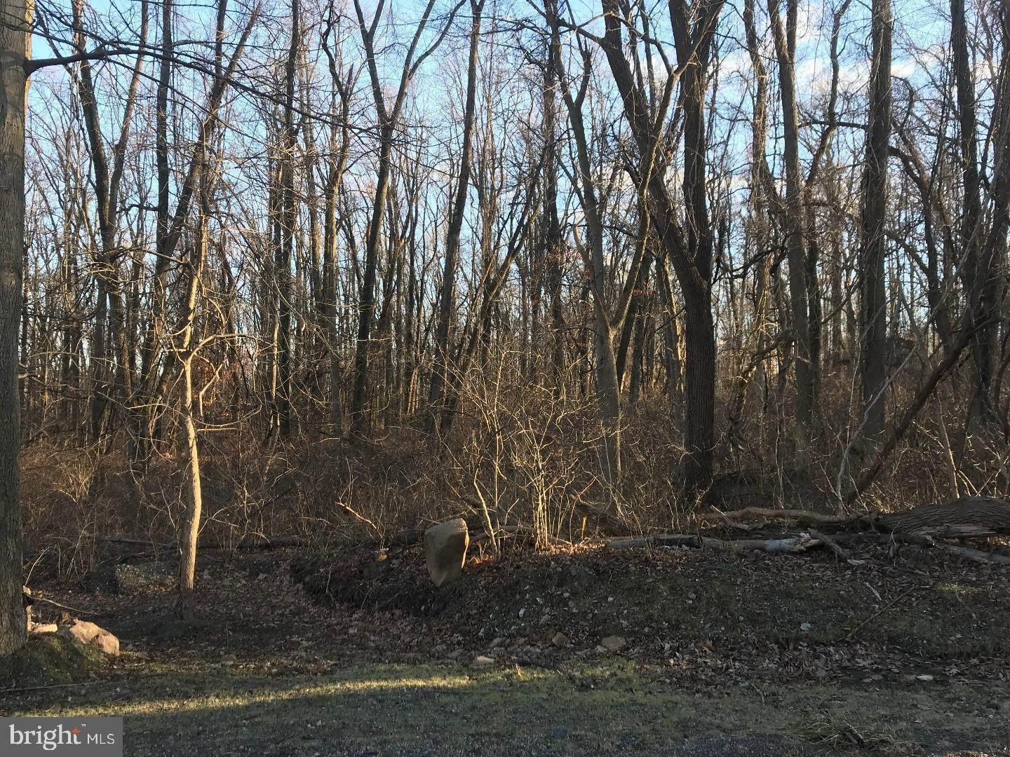 Land for Sale at 2400 FLOWING SPRINGS Road Birchrunville, Pennsylvania 19421 United States